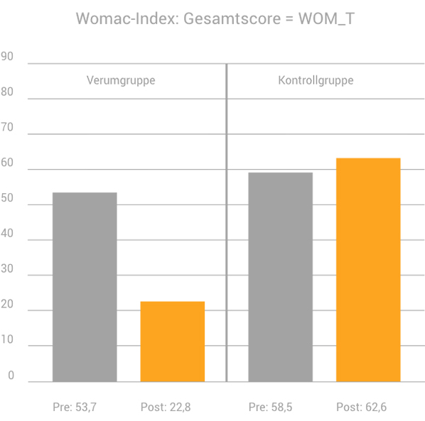 MAGCELL klinische Studie Womac-Index